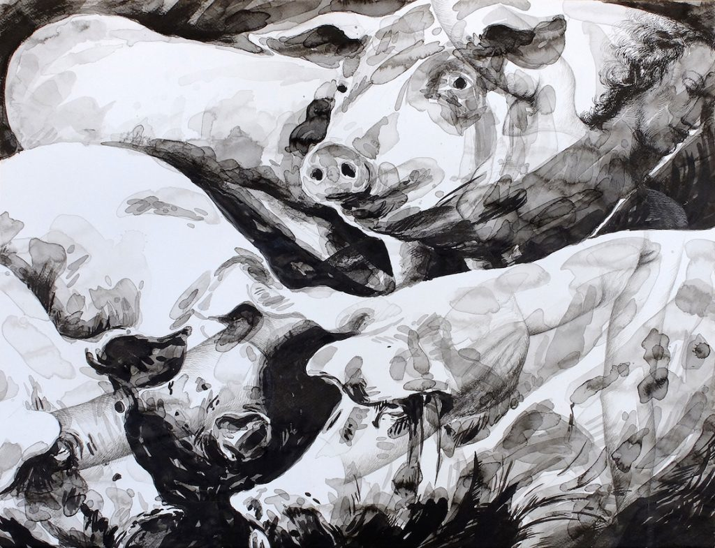Paolo Boosten Indian Ink drawing, with pigs.